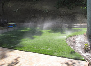 The Magic of a Great Looking Lawn with Sod Grass