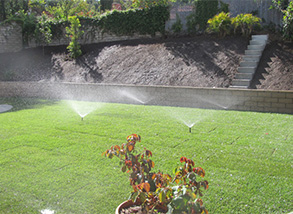 Irrigation Services and Lawn Sprinkler Systems