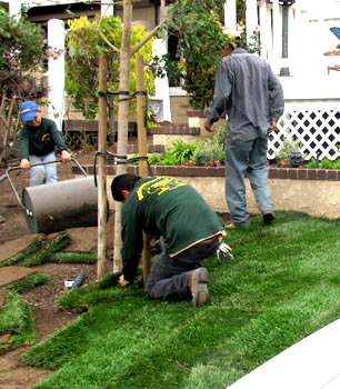 Landscaping Gardening Services Landscape camarillo landscaping tree service in conejo valley gonzalez landscaping tree service is a full service landscape and tree service company dedicated to landscape arrangement tree services workwithnaturefo